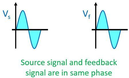 phase diagram of positive feedback amplifier